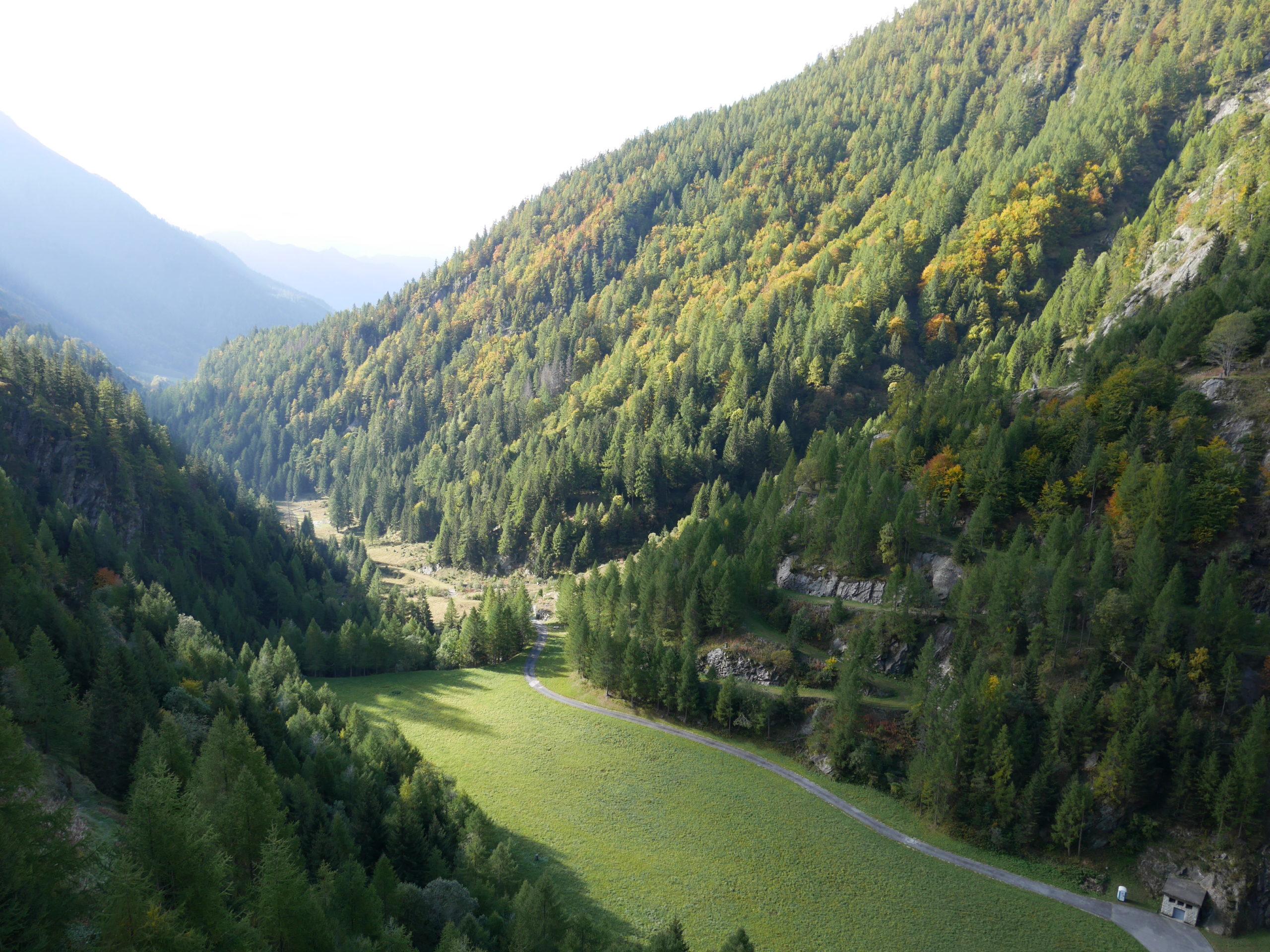 Nelle valli del Ticino in Svizzera sara caulfield
