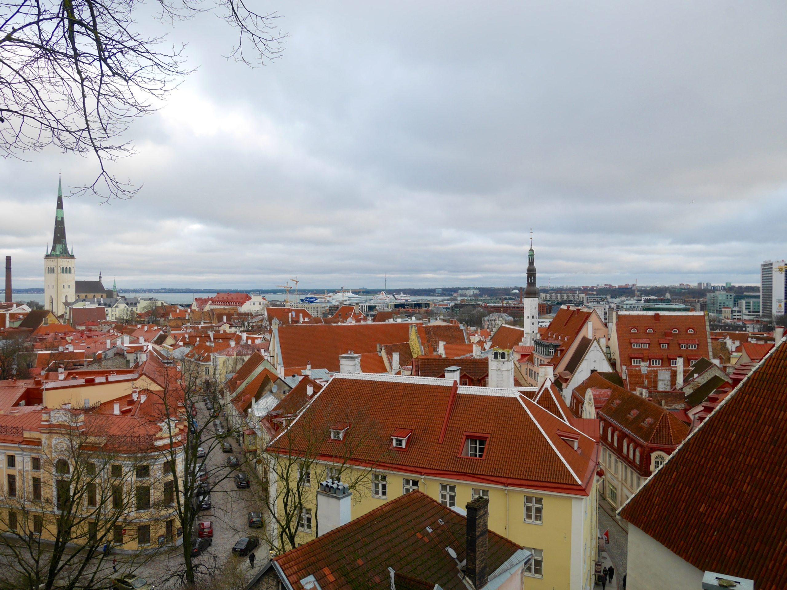Cosa fare tre giorni a Tallinn e dintorni sara caulfield